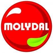 MOLYDAL Deutschland GmbH