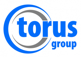 Torus Measurement Systems Limited