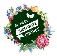 Landgard Blumen & Pflanzen GmbH - Blumen 1000 gute Gründe