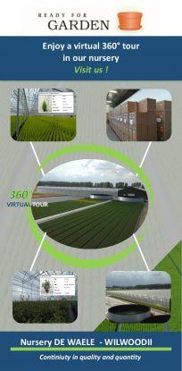 Enjoy a virtual 360° tour in our nursery!