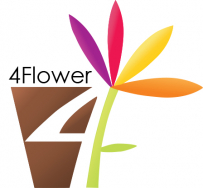 4 Flower Sp. z o.o.