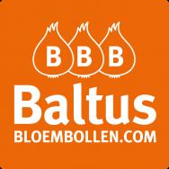 BALTUS Bloembollen B.V.