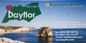 Bayflor Lda.
