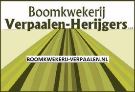 Boomkwekerij Verpaalen-Herijgers vo