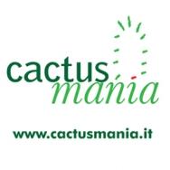 CACTUSMANIA di Manera Bruno