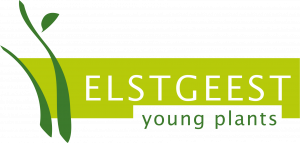 Elstgeest Young Plants