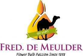 Fred. de Meulder Export B.V. DAHLIAS
