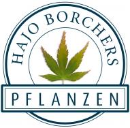 Hajo Borchers Pflanzen GmbH