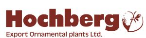 Hochberg export ornamental Plants ltd.