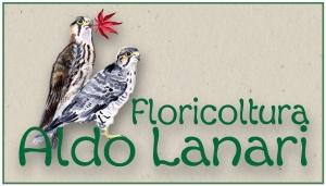 FLORICOLTURA ALDO LANARI di Lanari Gabriele