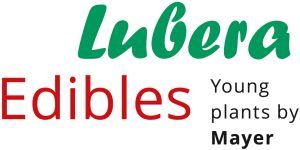 Lubera Edibles GmbH