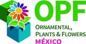 MEXICO - Ornamental Plants and Flowers