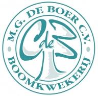 M.G. De Boer CV
