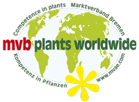 mvb plants worldwide Marktverband Bremen GmbH