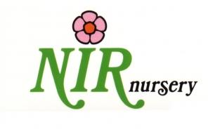 Nir Nursery