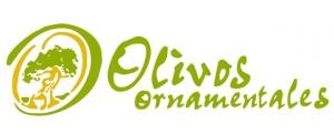 OLIVOS ORNAMENTALES