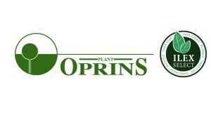 OPRINS PLANT N.V.