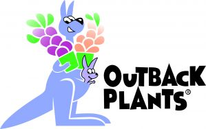 Outback Plants