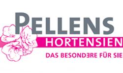 Pellens Hortensien
