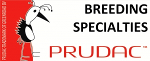 Prudac Specialty Breeding Greenroad BV
