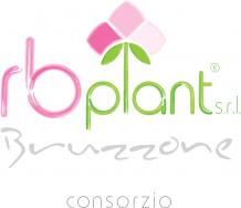 RB plant srl
