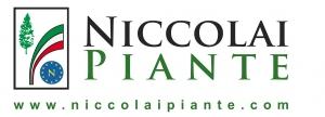Niccolai Piante Soc. Agr. di Fabio Niccolai e C. S.S.