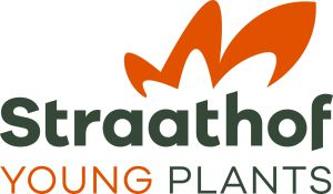 Straathof Young Plants B.V.