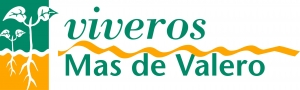 Viveros Mas de Valero S.L.