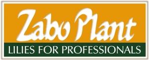 Zabo Plant BV