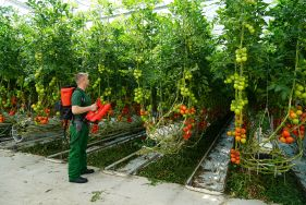 AS 1200 - new spraying procedure for plant protection