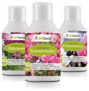 Balkonoase - Rosenwunder - Orchideentraum von BioTaurus