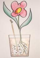 Biologisch abbaubarer Etikettenstab versorgt die Pflanze mit Nährstoffen