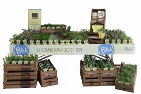 """""""Blu"""" essbare Pflanzen aus Bioland-Produktion"""