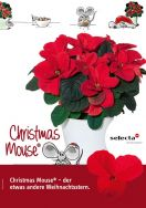 Christmas Mouse® – der etwas andere Weihnachtsstern