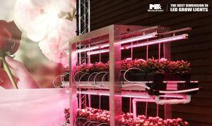 CoolGrow ® Linear - LED grow light bar Vertical Farming