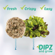 Dipz & Grow - Lettuce moss ball