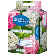 Endless Summer Hydrangea white & pink potting soil