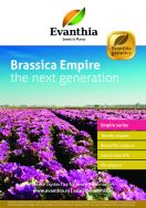 Brassica Empire: The new generation