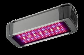 FL300 LED Fixtures