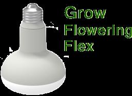 Grow Flowering Flex 320
