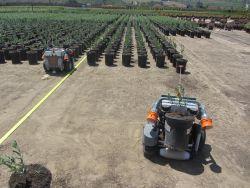 Harvest 100: Der Roboter für die Baumschule