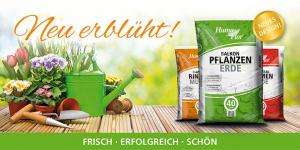 Humo-Flor - Neu erblüht: Der Verpackungs- und Produktrelaunch für gute Umsätze