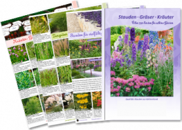 New perennial brochure is published for the IPM