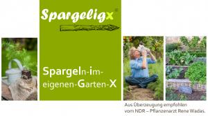 Der Spargel für den Hausgarten:  Spargeligx®!
