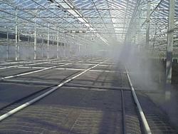 OPL Steam sheets