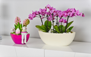 Owal Flowerpot