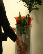 Pot plant bag