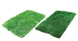 Preserved lichen - flat moss panels