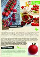 Bereicherung für jeden Tomaten-Fan: Rosinentomate `Arielle`