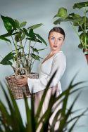 Tropical Seeds & Plants